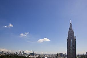 東京の風景の写真素材 [FYI00478933]