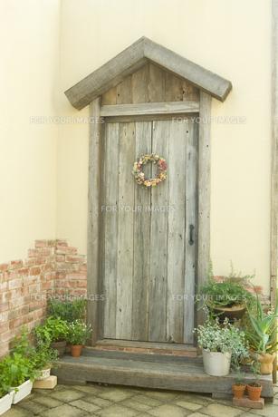 玄関脇で育ているローズマリーやアロエやミントの写真素材 [FYI00479941]