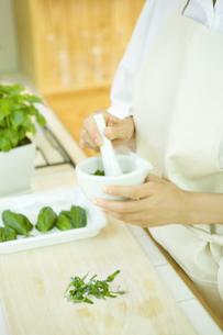すり鉢でジェノバソースを作る女性の写真素材 [FYI00480144]