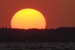 霞ヶ浦に沈む巨大太陽の写真素材 [FYI00480266]