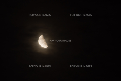 半月の写真素材 [FYI00480358]