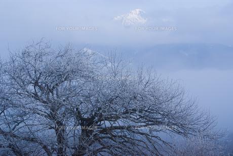 霧の八ヶ岳の写真素材 [FYI00480410]