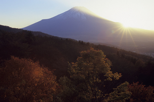 秋の夕暮れの富士、Fall of dusk of Fujiの写真素材 [FYI00480443]