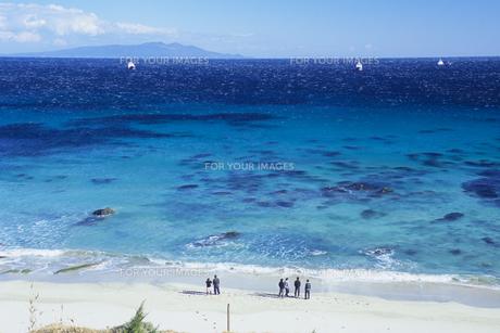 青い海と若者たち、Blue sea and young peopleの素材 [FYI00480467]