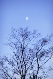 静寂の色の写真素材 [FYI00480504]