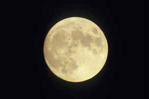 亜麻色の月、Flaxen month ofの写真素材 [FYI00480559]