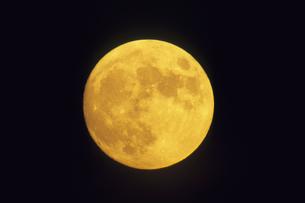 琥珀色の月、Amber month ofの写真素材 [FYI00480560]