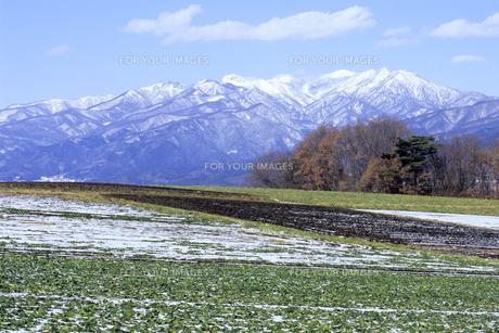 初冬の武尊山、Early winter of Hotakayamaの素材 [FYI00480580]