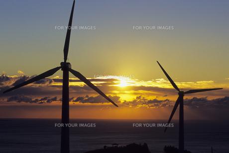 朝の光とプロペラ、Morning light and the propellerの写真素材 [FYI00480586]