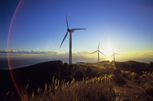 太陽と風力発電機、Solar and wind power generatorの写真素材 [FYI00480588]