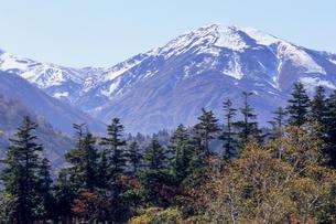 冠雪の雪倉岳の写真素材 [FYI00480648]