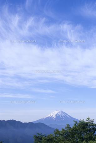 絹雲と富士の素材 [FYI00480680]
