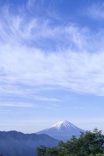 絹雲と富士の写真素材 [FYI00480680]