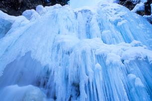 氷瀑の壁・乗鞍高原・善五郎の滝の写真素材 [FYI00480715]