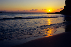 朝日を浴び白浜海岸の写真素材 [FYI00480746]