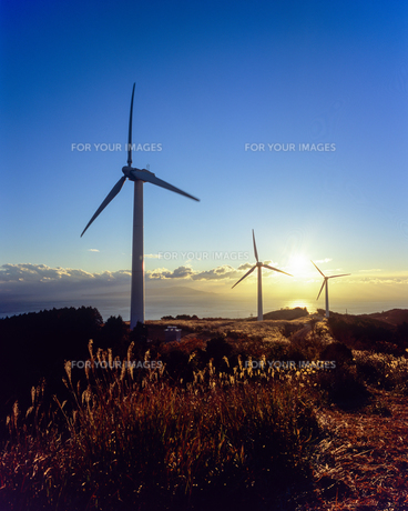 風力発電機と朝日の写真素材 [FYI00480754]