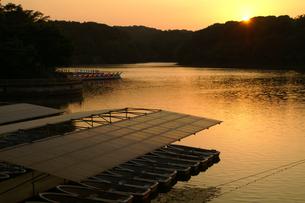 宮沢湖の夕暮れの写真素材 [FYI00480839]