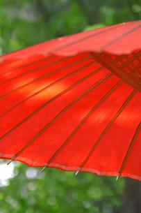 朱色の傘の写真素材 [FYI00480844]