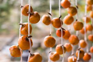干し柿の暖簾の写真素材 [FYI00480853]