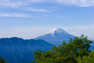 富士山遠望・柳沢峠の写真素材 [FYI00480908]