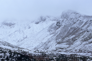 降雪の富良野岳の写真素材 [FYI00481210]