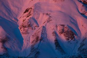 夕映えの立山の写真素材 [FYI00481316]