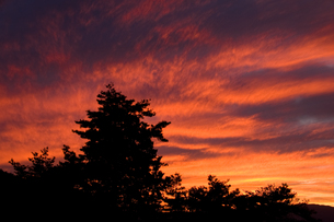 閑乗寺公園展望台から望む夕焼けの写真素材 [FYI00481318]