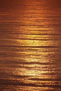 小田原市国府津海岸の朝の海の写真素材 [FYI00481341]