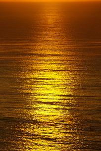 小田原市国府津海岸の朝の海の写真素材 [FYI00481343]