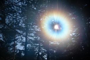 森の中の光輪の写真素材 [FYI00481364]