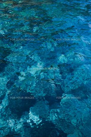伊豆大島の青い海の素材 [FYI00481369]