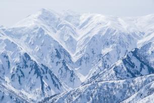 新潟県谷川連峰・タカマタギ山から望む上越の冬山の写真素材 [FYI00481410]