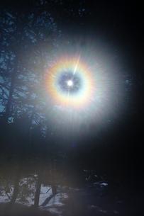森の中の光輪の写真素材 [FYI00481476]