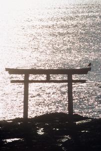 輝く海と鳥居の素材 [FYI00481479]