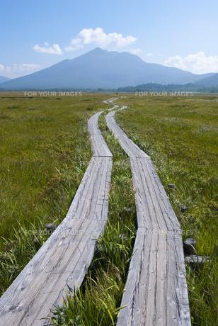 尾瀬の木道と燧ヶ岳の素材 [FYI00481537]