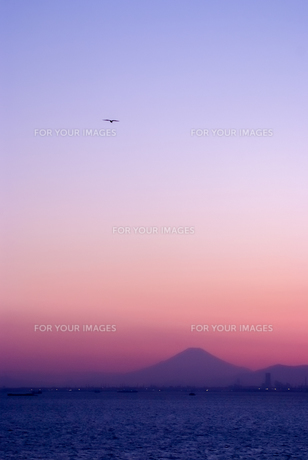 富士山とジェット機の素材 [FYI00481760]