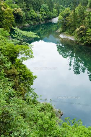 緑豊かな四国jの川の素材 [FYI00481779]