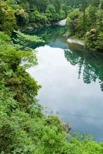 緑豊かな四国jの川の写真素材 [FYI00481779]