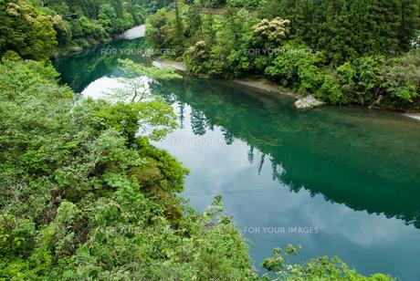 緑豊かな四国jの川の素材 [FYI00481787]