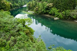 緑豊かな四国jの川の写真素材 [FYI00481787]
