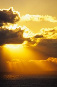 天使のはしご(光のシャワー) (Shower of light) ladder of angelsの写真素材 [FYI00481868]