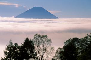 雲上の富士山の写真素材 [FYI00481897]