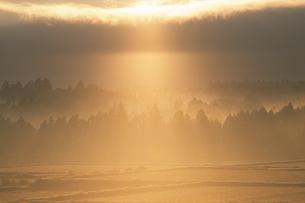 天からの光の写真素材 [FYI00481901]