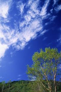 高原の空色の素材 [FYI00481906]