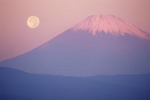 月と富士山の写真素材 [FYI00481910]
