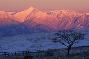 夜明けの北アルプスの写真素材 [FYI00481911]