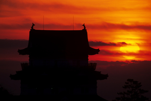 日の出と小田原城 - Sunrise Metropolitan Odawara Castleの写真素材 [FYI00481924]