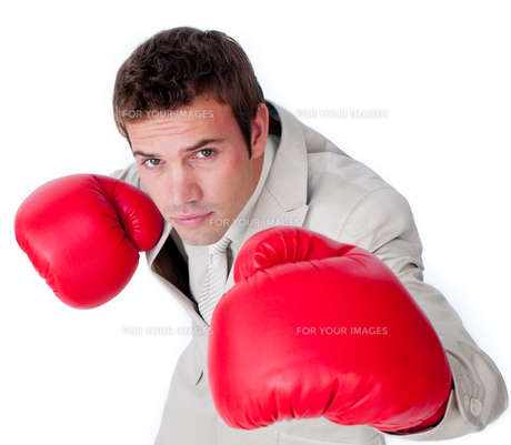 Confident businessman wearing boxing glovesの写真素材 [FYI00482215]