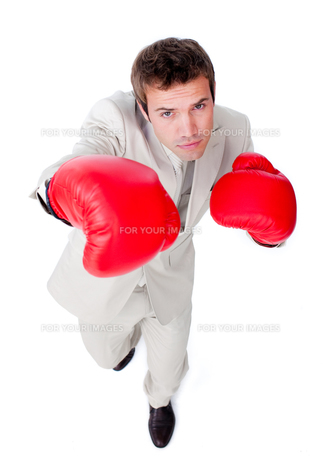 Handsome businessman using boxing glovesの写真素材 [FYI00482223]