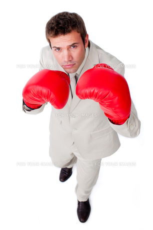 Cute businessman using boxing glovesの写真素材 [FYI00482224]